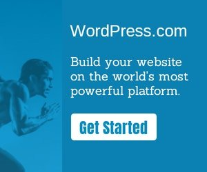 Wordpress Websites and Themes